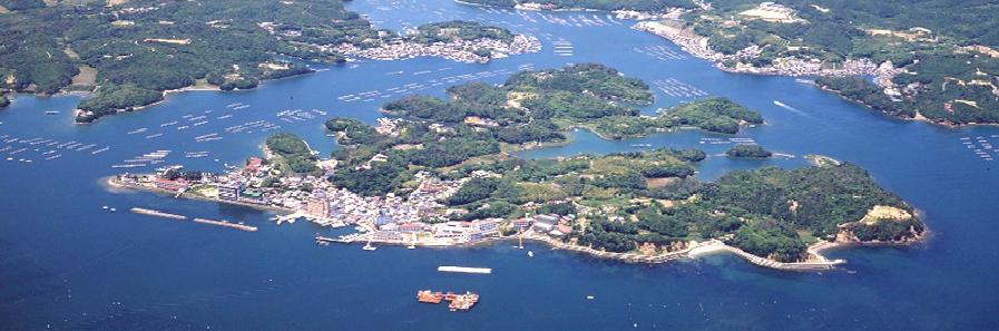 宿泊 渡 鹿野島
